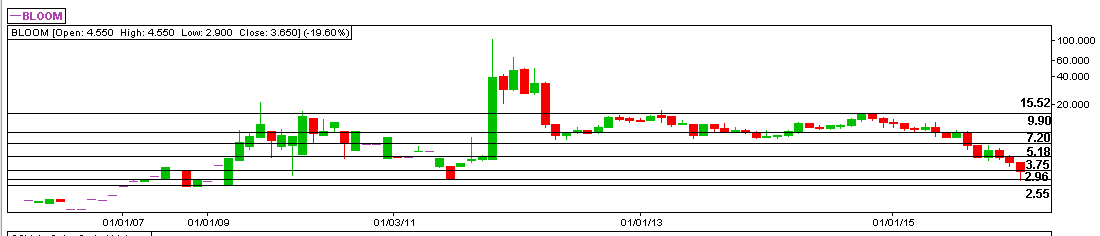 BLOOMBERRY RESORTS CORPORATION (BLOOM) - 01.26.2016 - Monthly